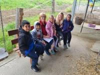 Zu Besuch am Bauernhof
